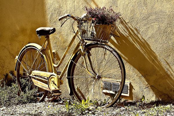 You are currently viewing Stylizowane rowery szosowe